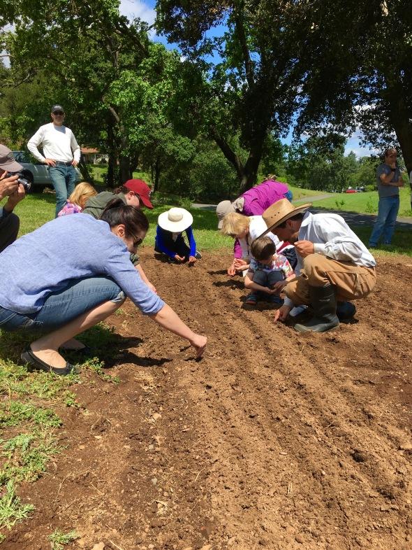community planting 2016